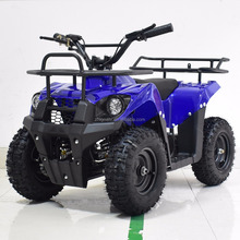 49cc Mini Kids Quad Bike ATV
