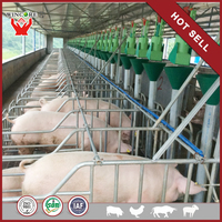 automatic pig factory building pig farm industrial design