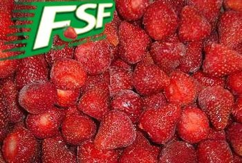 Green food 2014 season Frozen strawberry Senga Sengana