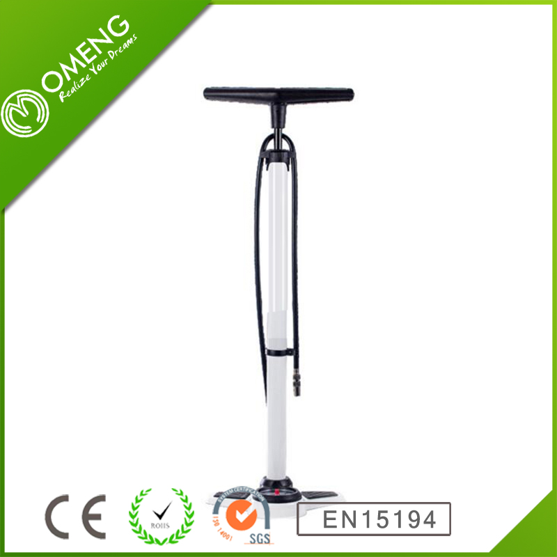 Chinese ManufacturerHigh Quality Hose Aluminum Bicycle Mini Pump