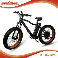 Wholesale new model electric bikes with lithium battery