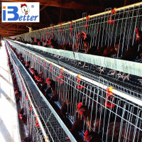 Better Brand poultry chicken cage for Uganda