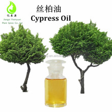 Private Label Factory Direct Supply High Quality 100% Natural Cypress Oil Blue/Cypress Blue Oil/Cypress Wood Prices
