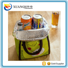 Cheapest and cute handy lunch bags cooler for food