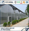 Pre Galvanized steel pipe greenhouse manufacture