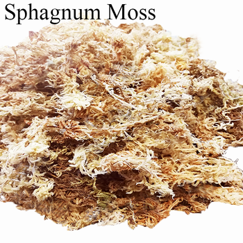 Garden Supplies Sphagnum Moss Substrates For Planting Orchid