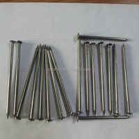 galvanized concrete building steel nails with good quality