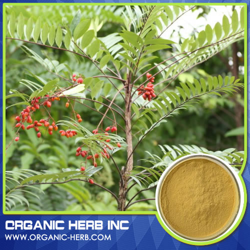 Natural Herbal Tongkat Ali Extract