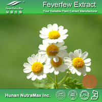 100% Nature Pure Organic high quality healthy Feverfew Extract
