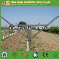 1.5mm Thickness Orchard Plantations Vine Plants Hot Dipped Galvanized Metal Vineyard Trellis Post Grape Stake