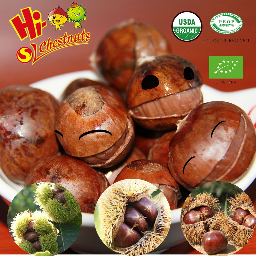 Wholesale OEM Snacks Ready to Eat Organic Ringent Chestnuts