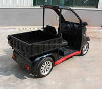 New Chinese Smart Electric Cargo Car