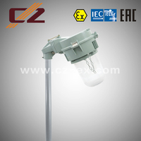 ATEX IECEX Zone 2 70w explosion proof light Metal Halide lamp