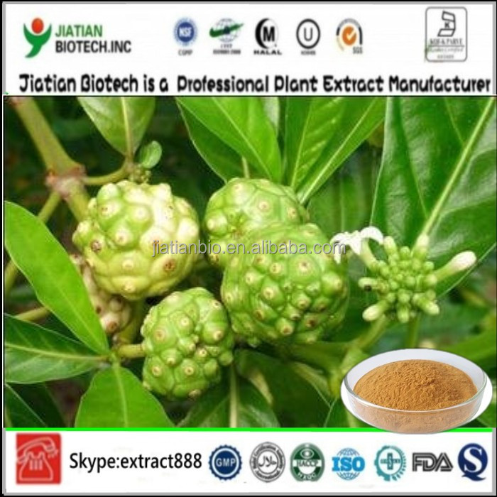 Top Quality Noni Extract Powder 10% Polysaccharides