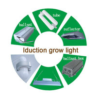 Professional manufacturer XPES 120watt induction grow energy saving light