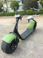 Popular Citycoco Scrooser with Pone Out Door 1000w Electric Scooter For Adult