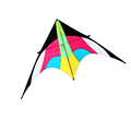 Outdoor sport delta easy flying animal kite from Chinese kite factory