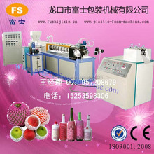 CE & ISO9001 Apple/Guava/Melon/Mango EPE Foam Net/Pad Production Line