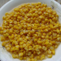 Canned Sweet Corn In Water Delicious