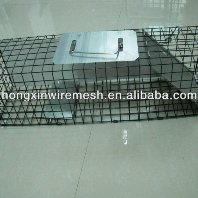 Rat Small Possum Trap 50cm Humane Live Trap Pest Rodent Rat Control Cage