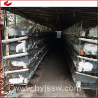 Cheap Galvanized Welded Rabbit Farming Cage And Rabbit Cage Materials