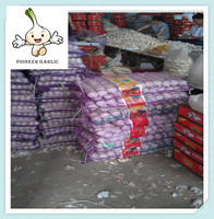 Import China / Chinese Garlic / Wholesale Nature Garlic