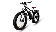 alloy big tire beach E-bike
