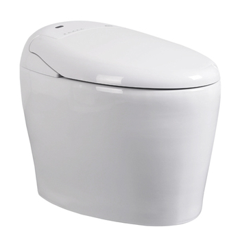 762 Bathroom electronic toilet bidet for sale