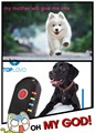 gps dog tracker collar,dog collar gps tracker