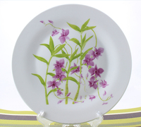 Custom printed ceramic dinner plate , ceramic dishes plate , printing ceramic plates dishes
