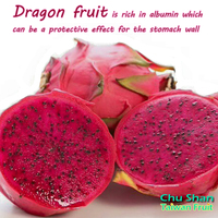 Taiwan Fresh red dragon fruit for sale