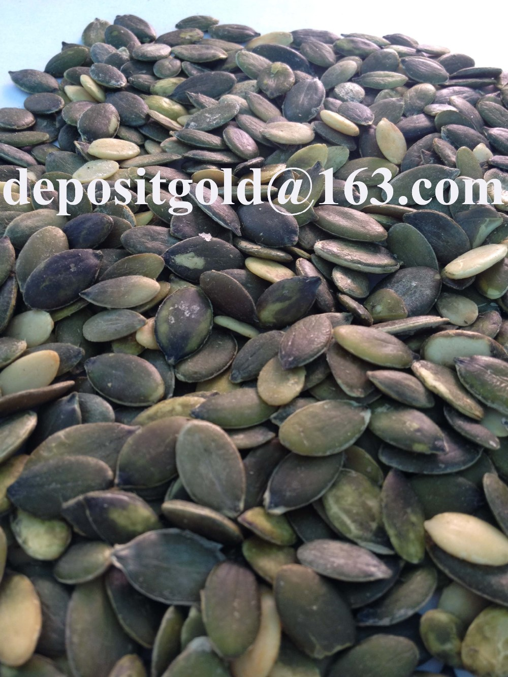 GWS pumpkin seeds pirce Grade A