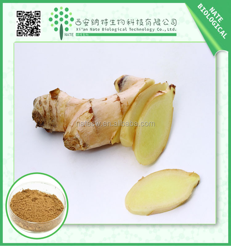 high purity 1%~10% gingerol pure ginger extract for ginger tea