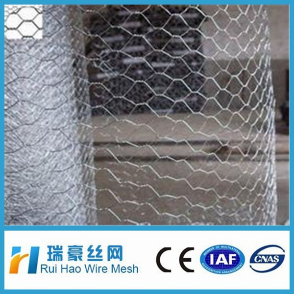 Hot Sale Chicken Coop Hot Dipped Galvanized Hexagonal Wire Mesh