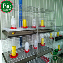 galvanized chicken brooder cage wire mesh netting on hot sale