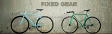 road bike fixed gear single speed customized bike for USA and Europe market with Austrian designing
