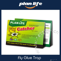 Free Sample Fly Catcher Glue Trap Strong Sticky Flypaper Carta Moschicida