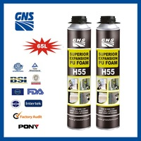 GNS H55 two component polyurethane foam