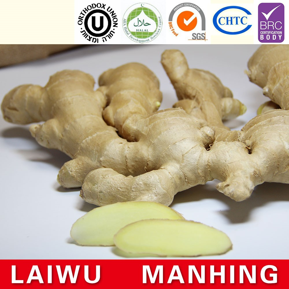 Hot sale fresh ginger high quality