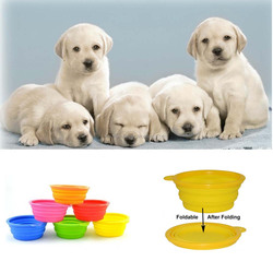 Silicone folding collapsible dog bowl from Shenzhen supplier