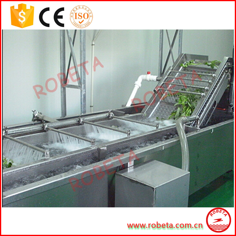stainless steel apple/pear/mango/fruit/vegetable washing/cleaning/processing machine