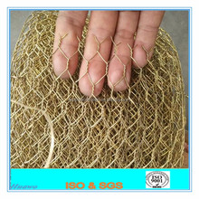 1 inch hexagonal chicken wire mesh/plastic coated hexagonal wire netting / Double twist hexagonal mesh
