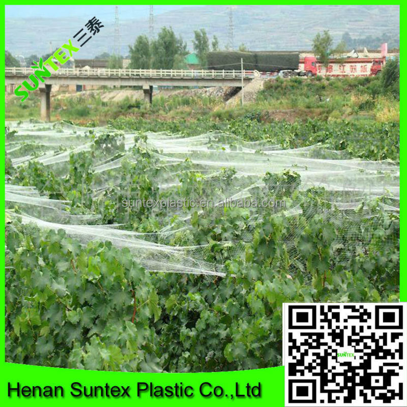 Hot sell UV treated fruit tree cover plastic bird net / bird capture net made in China
