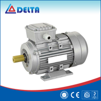Marathon Brand Three Phase Y2 Series Electric Motor