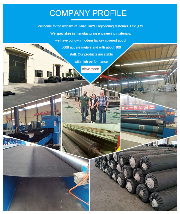 Pp short or long fibers nonwoven needle punch geotextile in china