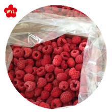 frozen fruits iqf raspberry with best price