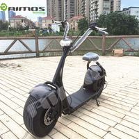 1000w/1500w cbeap 2 wheel citycoco electric scooter in india