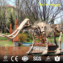 My Dino-AS012 New Excavation Dig It Out Discover Mammoth Skeleton