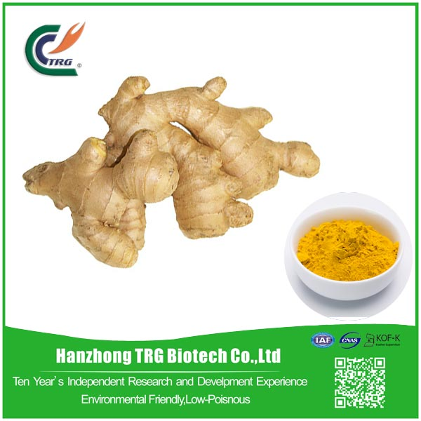 dry 100% natural ginger root extract with low price