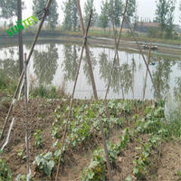 agricultural plastic vegetable plants support netting green trellis mesh, creeper plant support net